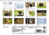 Finland's fauna (Wall Calendar 2019 DIN A4 Landscape) - Produktdetailbild 13