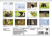 Finnland: eine tierische Entdeckungsreise (Wandkalender 2019 DIN A4 quer) - Produktdetailbild 13