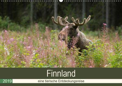 Finnland: eine tierische Entdeckungsreise (Wandkalender 2019 DIN A2 quer), Alexandra Wünsch