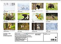 Finnland: eine tierische Entdeckungsreise (Wandkalender 2019 DIN A2 quer) - Produktdetailbild 13
