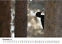Finnland: eine tierische Entdeckungsreise (Wandkalender 2019 DIN A2 quer) - Produktdetailbild 11
