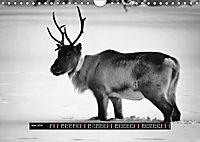 Finnland Panorama in schwarz-weiss (Wandkalender 2019 DIN A4 quer) - Produktdetailbild 3