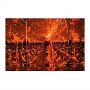 Firecracker In A Box Of Mirrors, Tim Kinsella