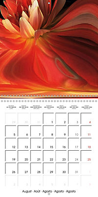 Fireworks In Red (Wall Calendar 2019 300 × 300 mm Square) - Produktdetailbild 8