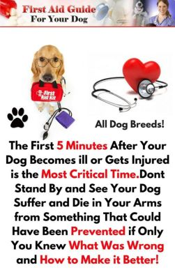 First Aid Guide for Your Dog, Darryl Craig