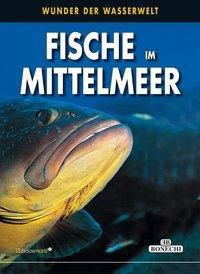 Fische im Mittelmeer - Andrea Ghisotti |