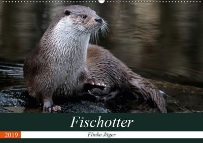 Fischotter, flinke Jäger (Wandkalender 2019 DIN A2 quer), J. R. Bogner