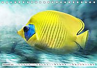 Fischwelt - Artwork (Tischkalender 2019 DIN A5 quer) - Produktdetailbild 12