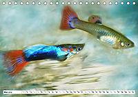 Fischwelt - Artwork (Tischkalender 2019 DIN A5 quer) - Produktdetailbild 5