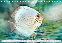 Fischwelt - Artwork (Tischkalender 2019 DIN A5 quer) - Produktdetailbild 10