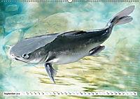 Fischwelt - Artwork (Wandkalender 2019 DIN A2 quer) - Produktdetailbild 9