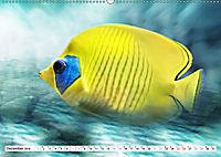 Fischwelt - Artwork (Wandkalender 2019 DIN A2 quer) - Produktdetailbild 12