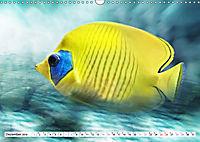 Fischwelt - Artwork (Wandkalender 2019 DIN A3 quer) - Produktdetailbild 12