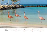 Flamingos 2019 - Produktdetailbild 7
