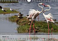 Flamingos Think pink (Wall Calendar 2019 DIN A4 Landscape) - Produktdetailbild 3