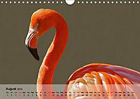 Flamingos Think pink (Wall Calendar 2019 DIN A4 Landscape) - Produktdetailbild 8