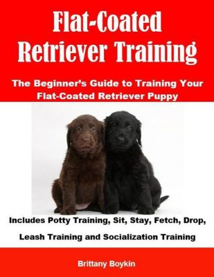Flat-Coated Retriever Training: The Beginner's Guide to Training Your Flat-Coated Retriever Puppy: Includes Potty Training, Sit, Stay, Fetch, Drop, Leash Training and Socialization Training, Brittany Boykin