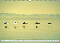 Flensburg Fjord (Wandkalender 2019 DIN A3 quer) - Produktdetailbild 6