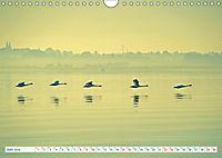 Flensburg Fjord (Wandkalender 2019 DIN A4 quer) - Produktdetailbild 6