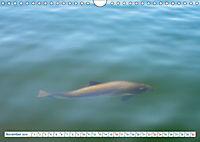 Flensburg Fjord (Wandkalender 2019 DIN A4 quer) - Produktdetailbild 11