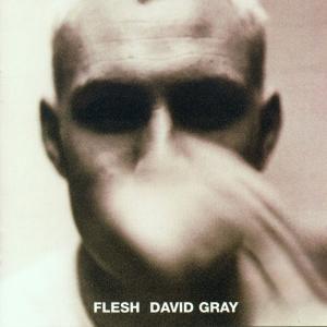 Flesh, David Gray