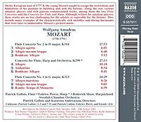 Flötenkonzerte - Produktdetailbild 1