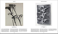 Flora - Produktdetailbild 11