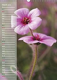 Floral Beauties in the Glasshouse (Wall Calendar 2019 DIN A3 Portrait) - Produktdetailbild 3