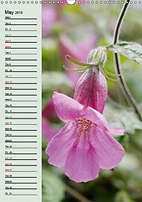 Floral Beauties in the Glasshouse (Wall Calendar 2019 DIN A3 Portrait) - Produktdetailbild 5