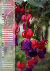 Floral Beauties in the Glasshouse (Wall Calendar 2019 DIN A3 Portrait) - Produktdetailbild 10