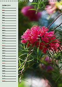 Floral Beauties in the Glasshouse (Wall Calendar 2019 DIN A3 Portrait) - Produktdetailbild 6