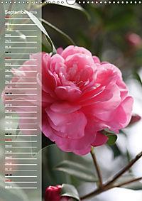 Floral Beauties in the Glasshouse (Wall Calendar 2019 DIN A3 Portrait) - Produktdetailbild 9