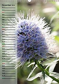 Floral Beauties in the Glasshouse (Wall Calendar 2019 DIN A3 Portrait) - Produktdetailbild 11
