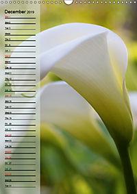 Floral Beauties in the Glasshouse (Wall Calendar 2019 DIN A3 Portrait) - Produktdetailbild 12
