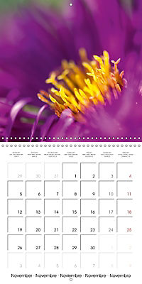 Floral Beauty (Wall Calendar 2018 300 × 300 mm Square) - Produktdetailbild 11