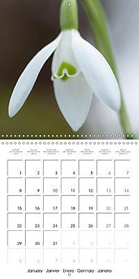 Floral Beauty (Wall Calendar 2018 300 × 300 mm Square) - Produktdetailbild 1