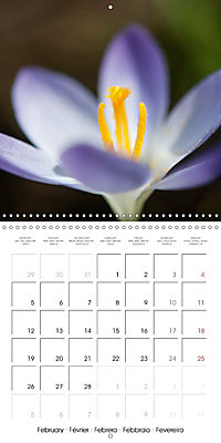 Floral Beauty (Wall Calendar 2018 300 × 300 mm Square) - Produktdetailbild 2