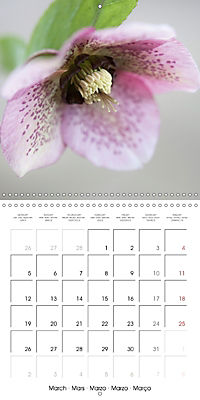 Floral Beauty (Wall Calendar 2018 300 × 300 mm Square) - Produktdetailbild 3