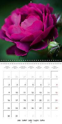 Floral Beauty (Wall Calendar 2018 300 × 300 mm Square) - Produktdetailbild 7