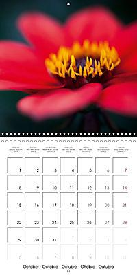 Floral Beauty (Wall Calendar 2018 300 × 300 mm Square) - Produktdetailbild 10