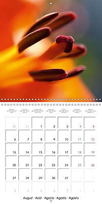 Floral Beauty (Wall Calendar 2018 300 × 300 mm Square) - Produktdetailbild 8