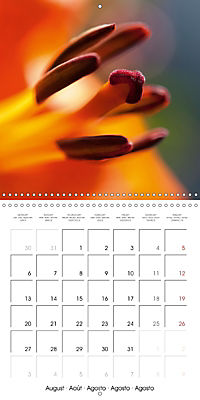 Floral Beauty (Wall Calendar 2018 300 × 300 mm Square) - Produktdetailbild 8