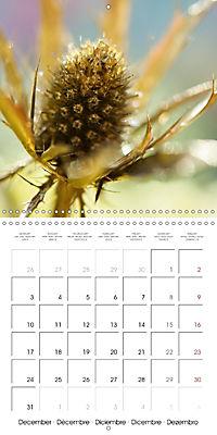 Floral Beauty (Wall Calendar 2018 300 × 300 mm Square) - Produktdetailbild 12