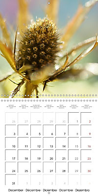 Floral Beauty (Wall Calendar 2018 300 × 300 mm Square) - Produktdetailbild 12
