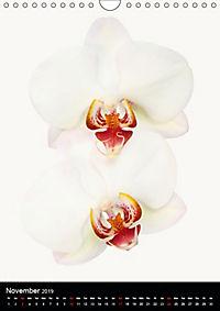 Florals (Wall Calendar 2019 DIN A4 Portrait) - Produktdetailbild 11