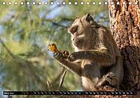 Flores - Indonesien (Tischkalender 2019 DIN A5 quer) - Produktdetailbild 3