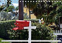 Floridas Post (Tischkalender 2019 DIN A5 quer) - Produktdetailbild 6