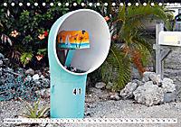 Floridas Post (Tischkalender 2019 DIN A5 quer) - Produktdetailbild 2