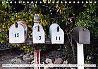 Floridas Post (Tischkalender 2019 DIN A5 quer) - Produktdetailbild 12