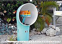 Floridas Post (Wandkalender 2019 DIN A3 quer) - Produktdetailbild 2